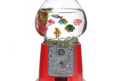 benefits of fish tanks for children